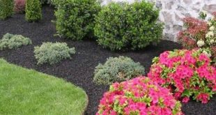 13 Tips For Landscaping On A Budget