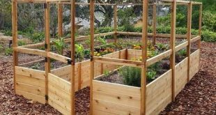 Outdoor Living Today - RB812DFO Raised Garden Bed 8 x 12 with Deer Fence Kit