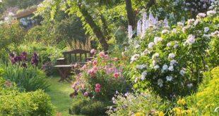 Beste geheime Gartenideen 16