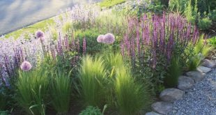 Über 80 wunderschöne Ideen für Vorgärten und Landschaftsprojekte